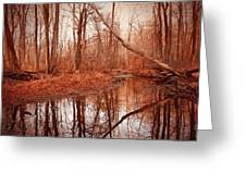 Island Creek Story Greeting Card