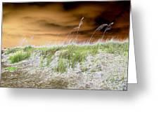 Island Dune Greeting Card