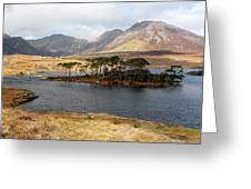 Island Of Trees In A Bare Connemara Landscape Greeting Card