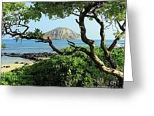 Island Through The Trees Greeting Card