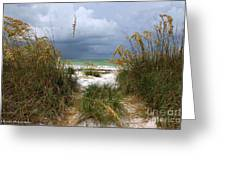 Island Trail Out To The Beach Greeting Card