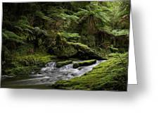 Islands Of Green 2 Greeting Card