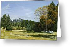 Isomata Meadow Greeting Card