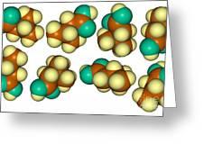 Isovaleric Acid Molecular Models Greeting Card
