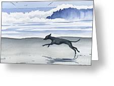 Italian Greyhound At The Beach Greeting Card