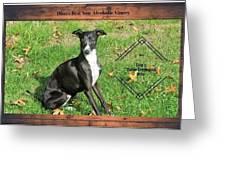 Italian Greyhound Wine Greeting Card