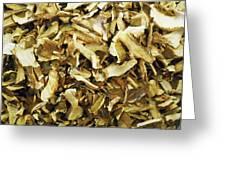 Italian Market Dried Mushrooms Greeting Card