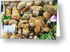Italian Market Porcini Mushrooms  Greeting Card