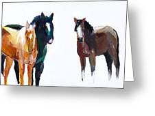 It's All About The Horses Greeting Card