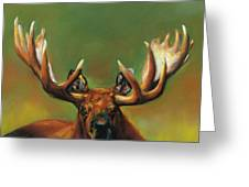 Its All About The Rack Greeting Card