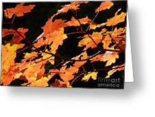 It's Fall Greeting Card