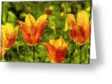 It's Springtime Again Greeting Card