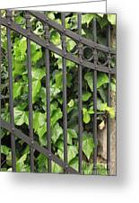 Ivy And Gate Greeting Card