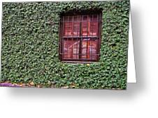 Ivy House Greeting Card