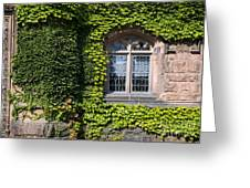 Ivy League Greeting Card
