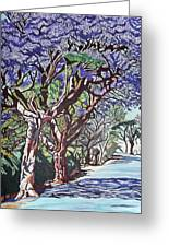 Jacaranda Road Greeting Card