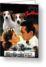 Jack Russell Terrier Art Canvas Print - Casablanca Movie Poster Greeting Card