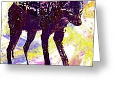 Jackal Children Watercolor Animal  Greeting Card