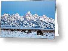 Jackson Hole The Grand Tetons Greeting Card