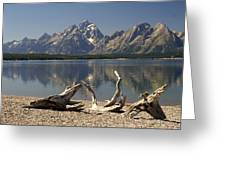 Jackson Lake 1 Greeting Card