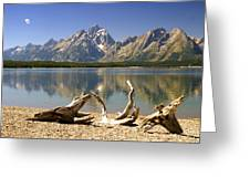 Jackson Lake 3 Greeting Card
