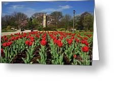 Jackson Park Spring Tulips 2 Greeting Card