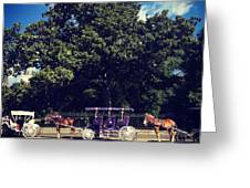 Jackson Square Carriages Greeting Card