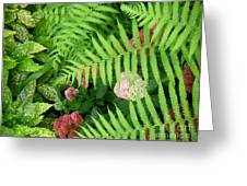Jacqueline's Garden - Camaraderie Of Textures Greeting Card