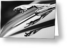 Jaguar Car Hood Ornament Black And White Greeting Card