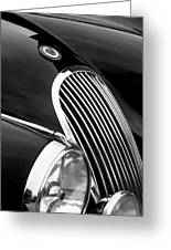 Jaguar Grille Black And White Greeting Card