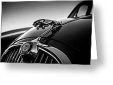 Jaguar Mascot Greeting Card