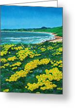 Jalama Beach Greeting Card