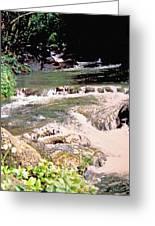 Jamaica Rushing Water Greeting Card