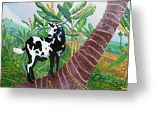 Jamaican Goat In A Tree Greeting Card