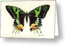 Jamaican Jewel Greeting Card
