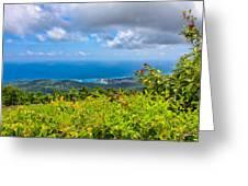 Jamaican Vista Greeting Card