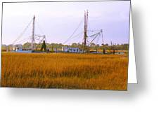 James Island Greeting Card