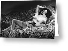Jane Russell In The Outlaw Greeting Card