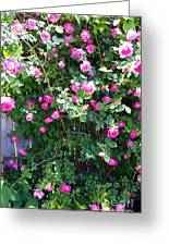 Jane's Rose Bush Greeting Card