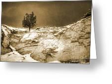January 7 2010 Greeting Card
