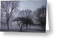 January Fog 6 Greeting Card