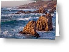 January In Big Sur Greeting Card