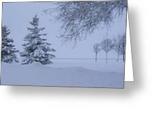 January In Ontario Greeting Card