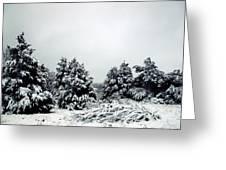 January Snow Iv Greeting Card
