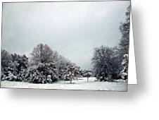 January Snow V Greeting Card