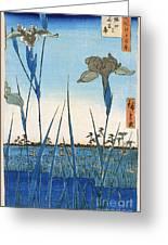 Japan: Iris Garden, 1857 Greeting Card