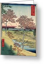 Japan: Maple Trees, 1858 Greeting Card