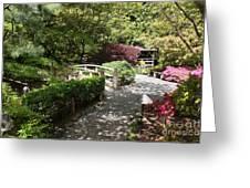Japanese Garden Path With Azaleas Greeting Card
