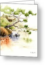 Japanese Garden Pond Sketch Greeting Card
