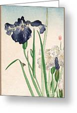 Japanese Irises Greeting Card